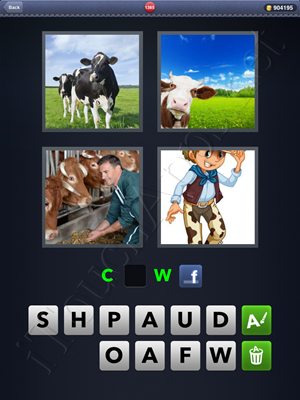 4 Pics 1 Word Level 1385 Solution