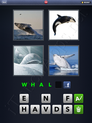 4 Pics 1 Word Level 1388 Solution