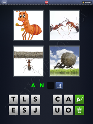 4 Pics 1 Word Level 1398 Solution