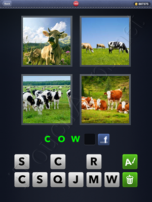 4 Pics 1 Word Level 1455 Solution