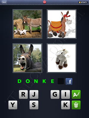4 Pics 1 Word Level 1504 Solution