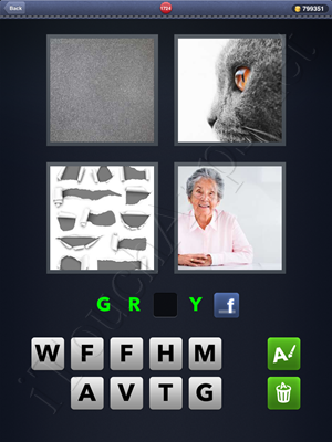 4 Pics 1 Word Level 1724 Solution