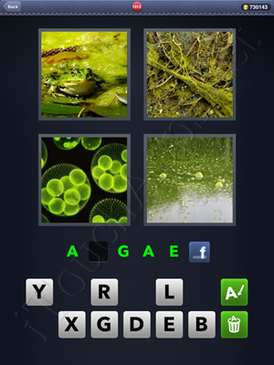 4 Pics 1 Word Level 1912 Solution