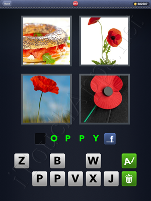 4 Pics 1 Word Level 2053 Solution