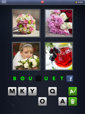 4 Pics 1 Word Level 2062 Solution
