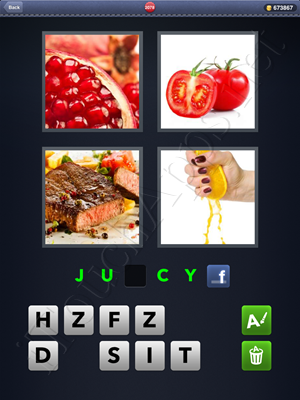 4 Pics 1 Word Level 2078 Solution