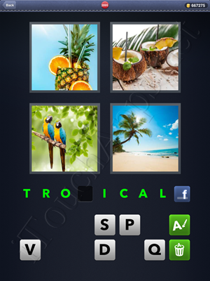 4 Pics 1 Word Level 2095 Solution