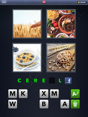 4 Pics 1 Word Level 2098 Solution