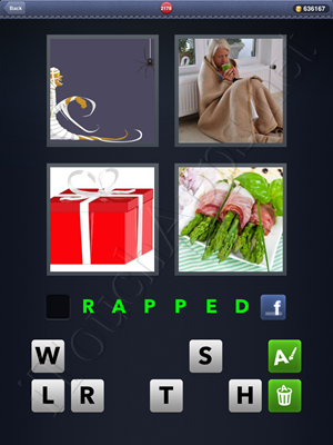 4 Pics 1 Word Level 2178 Solution