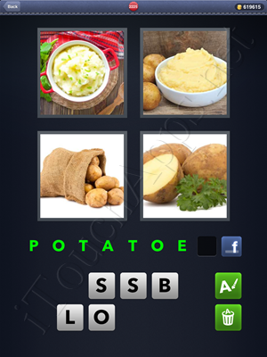 4 Pics 1 Word Level 2225 Solution