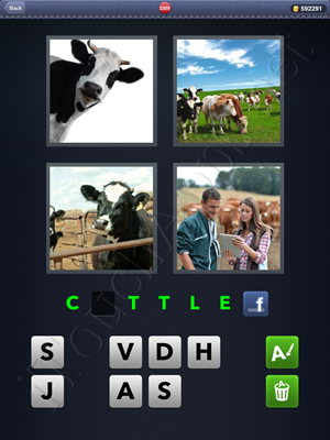4 Pics 1 Word Level 2309 Solution