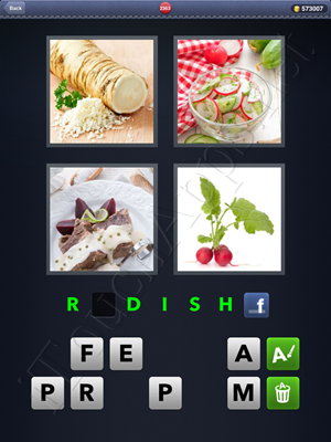 4 Pics 1 Word Level 2363 Solution