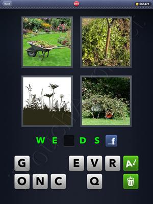4 Pics 1 Word Level 2384 Solution
