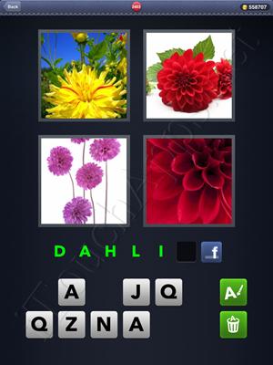 4 Pics 1 Word Level 2403 Solution