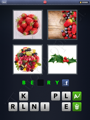 4 Pics 1 Word Level 2412 Solution