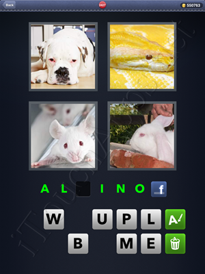 4 Pics 1 Word Level 2427 Solution