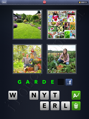 4 Pics 1 Word Level 2429 Solution