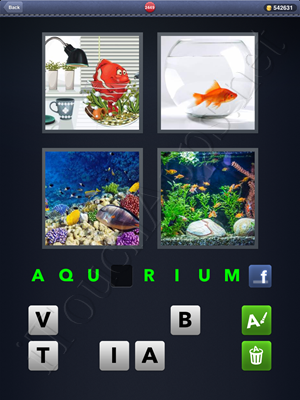 4 Pics 1 Word Level 2449 Solution