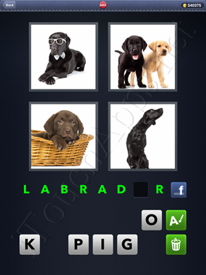 4 Pics 1 Word Level 2455 Solution