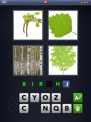 4 Pics 1 Word Level 2459 Solution