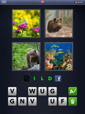 4 Pics 1 Word Level 2486 Solution