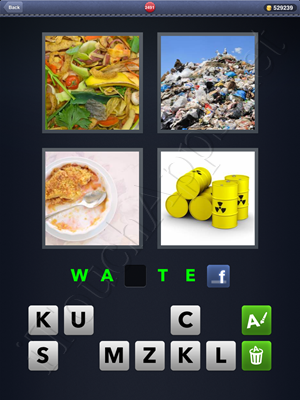 4 Pics 1 Word Level 2491 Solution