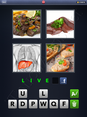 4 Pics 1 Word Level 2530 Solution