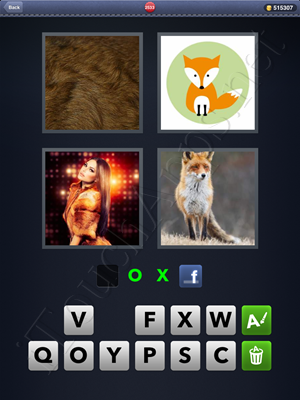 4 Pics 1 Word Level 2533 Solution