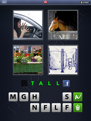 4 Pics 1 Word Level 2538 Solution