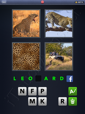 4 Pics 1 Word Level 2762 Solution