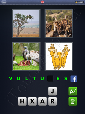 4 Pics 1 Word Level 2780 Solution
