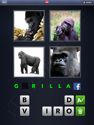 4 Pics 1 Word Level 2800 Solution