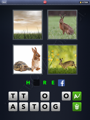 4 Pics 1 Word Level 2821 Solution