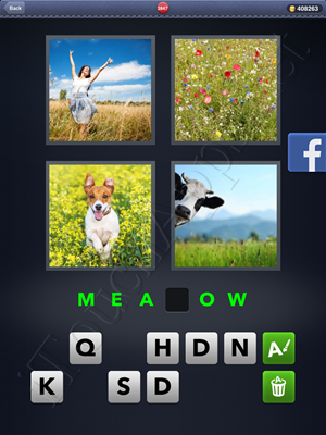 4 Pics 1 Word Level 2847 Solution