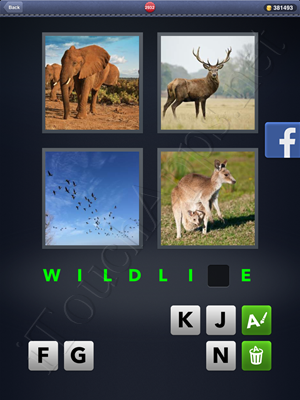 4 Pics 1 Word Level 2932 Solution