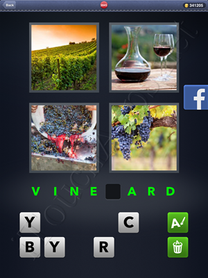 4 Pics 1 Word Level 3045 Solution