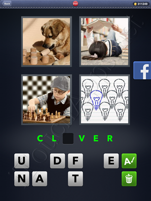 4 Pics 1 Word Level 3131 Solution