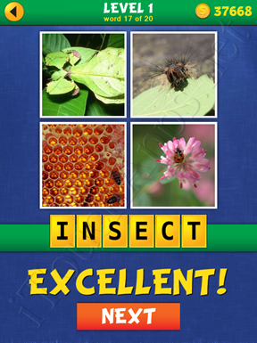 4 Pics Mystery Level 1 Word 17 Solution