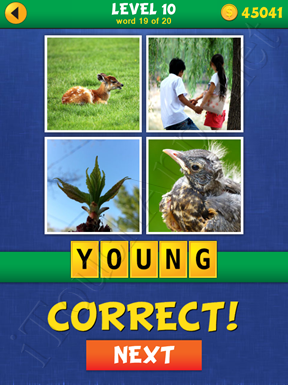 4 Pics Mystery Level 10 Word 19 Solution