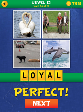 4 Pics Mystery Level 12 Word 14 Solution
