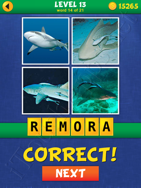 4 Pics Mystery Level 13 Word 14 Solution