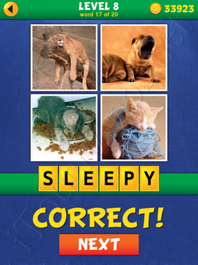 4 Pics Mystery Level 8 Word 17 Solution