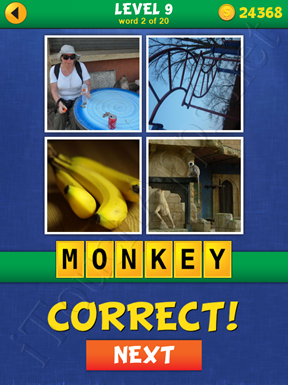 4 Pics Mystery Level 9 Word 2 Solution