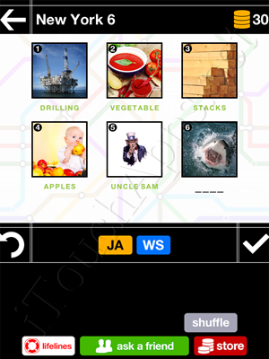 Pics & Pieces New York Pack Level 6 Answer