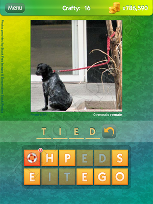 What's the Pic Crafty Level 16 Solution