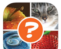 4 Pics 1 Word Puzzle: What's That Word Answers – Complete Solutions