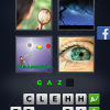 4 Pics 1 Word Answers: Level 3108