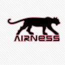 Logos Quiz Answers AIRNESS Logo