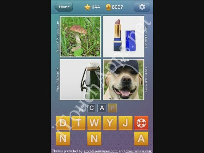 What's the Word Level 144 Solution