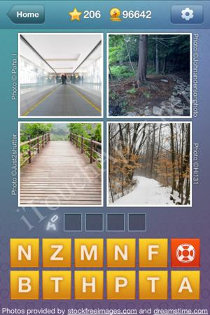What's the Word Level 206 Solution